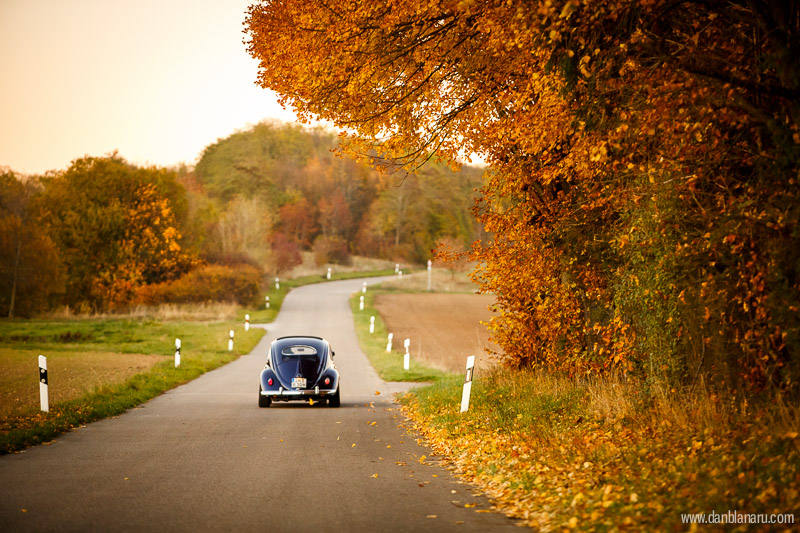 vw_beetle_in_autumn_leaves-