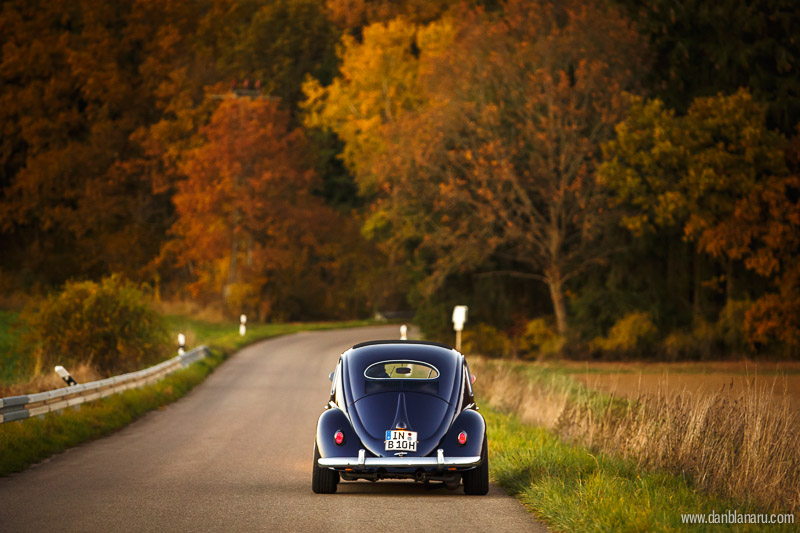 vw_beetle_in_autumn_leaves-1
