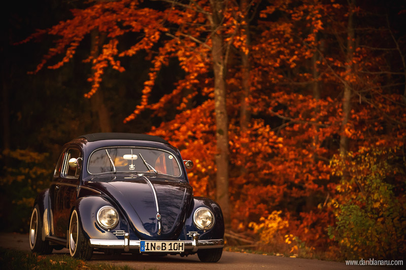 vw_beetle_in_autumn_leaves-10