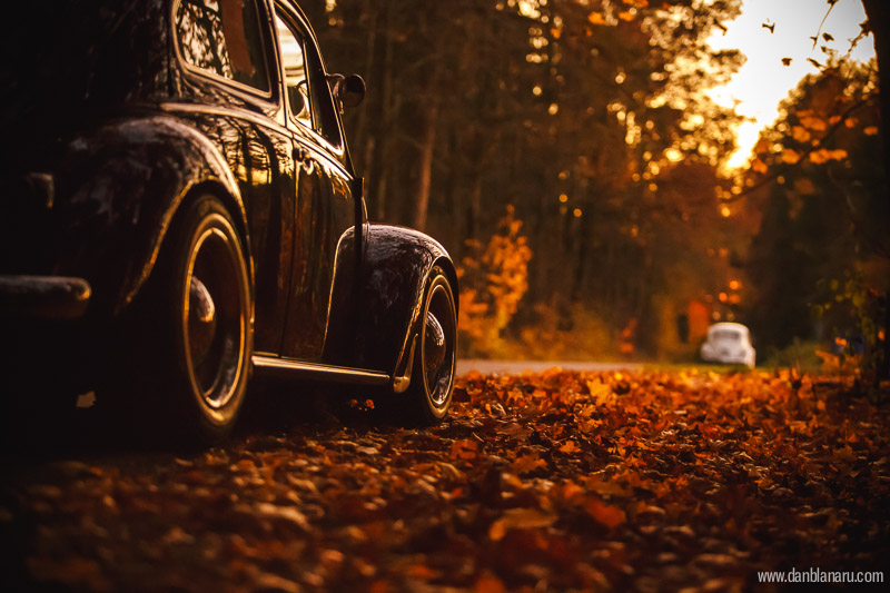 vw_beetle_in_autumn_leaves-16