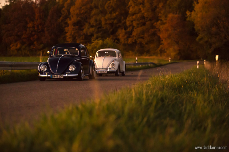 vw_beetle_in_autumn_leaves-20
