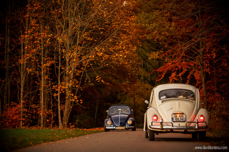 vw_beetle_in_autumn_leaves-4