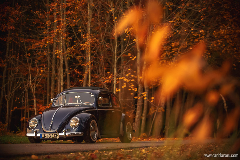vw_beetle_in_autumn_leaves-7