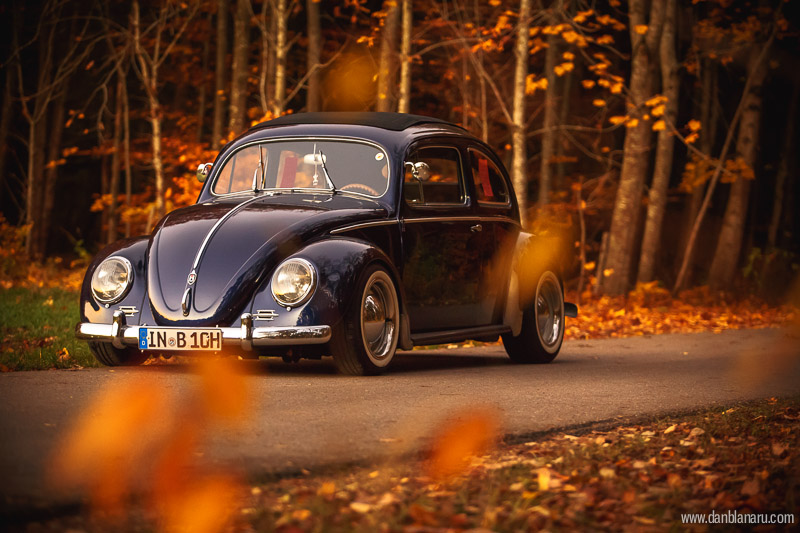 vw_beetle_in_autumn_leaves-9