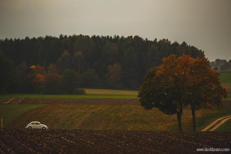 perlutza_autumn_3